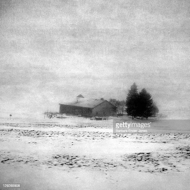 farmhouse in fog - ロモント ストックフォトと画像