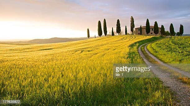 farmhouse in sunset - tuscany, italy - tuscany stock pictures, royalty-free photos & images