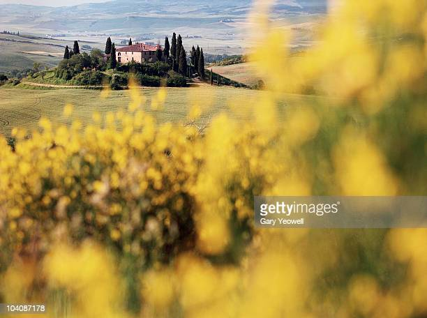 farmhouse in tuscany landscape - yeowell stock pictures, royalty-free photos & images