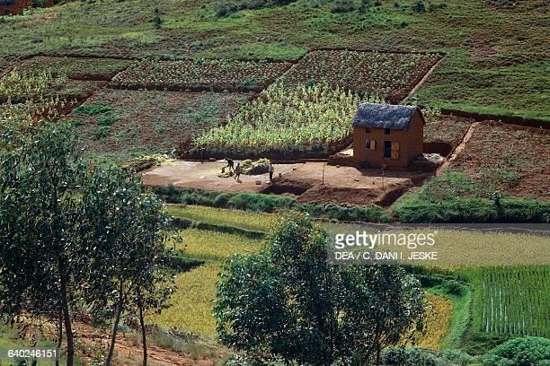 Farmhouse near Antananarivo, Madagascar.