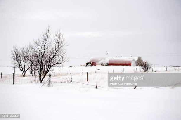 farmhouse near Selfoss, Iceland