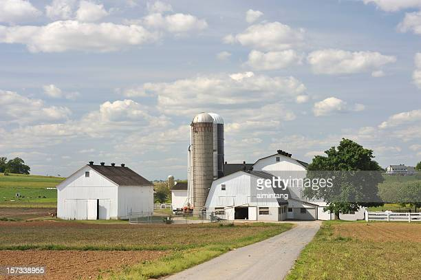 Farmhouses and Barn