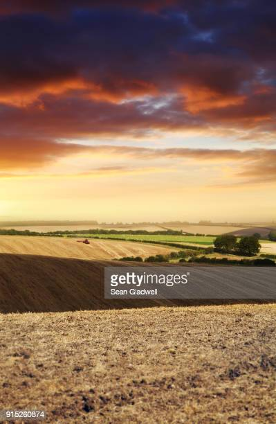 farming lincolnshire wolds - lincolnshire stock pictures, royalty-free photos & images