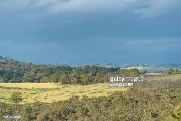 Farmland and bushland | Regional Victoria | Australia