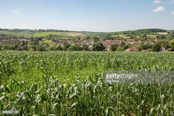 farmland and view of amersham town, buckinghamshire. - アマシャム ストックフォトと画像