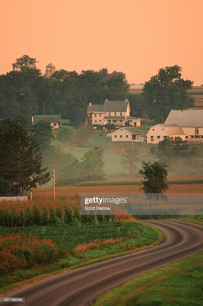 Farmland at dawn : Stockfoto