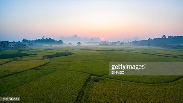 farmland at sunset ,Yangshuo,Guilin,China