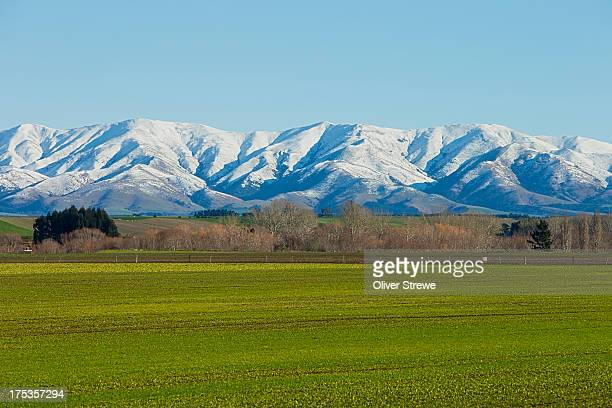 farmland central otago - invercargill stock pictures, royalty-free photos & images