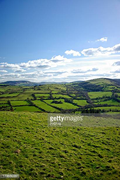 Farmland countryside with rolling green hills in Tipperary, Ireland