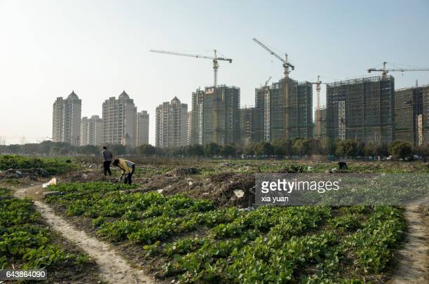 Farmland cultivated land against construction sites
