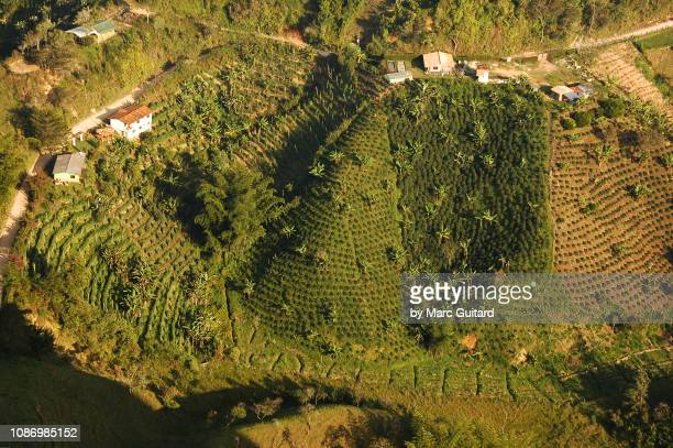 farmland in guatape, colombia - antioquia stock pictures, royalty-free photos & images