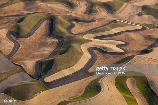 Farmland Landschaft mit Feldern und in den höheren Lagen furrows in Palouse,