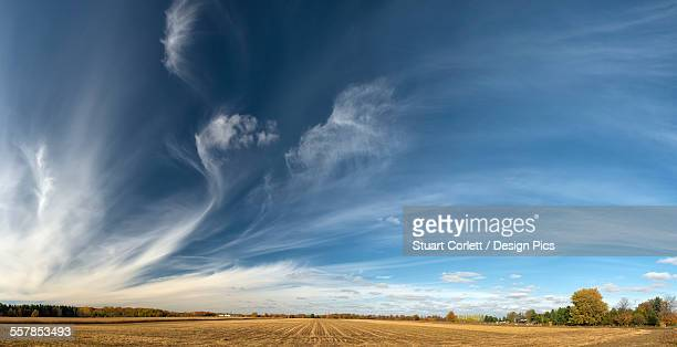 farmland near london - london ontario stock photos and pictures