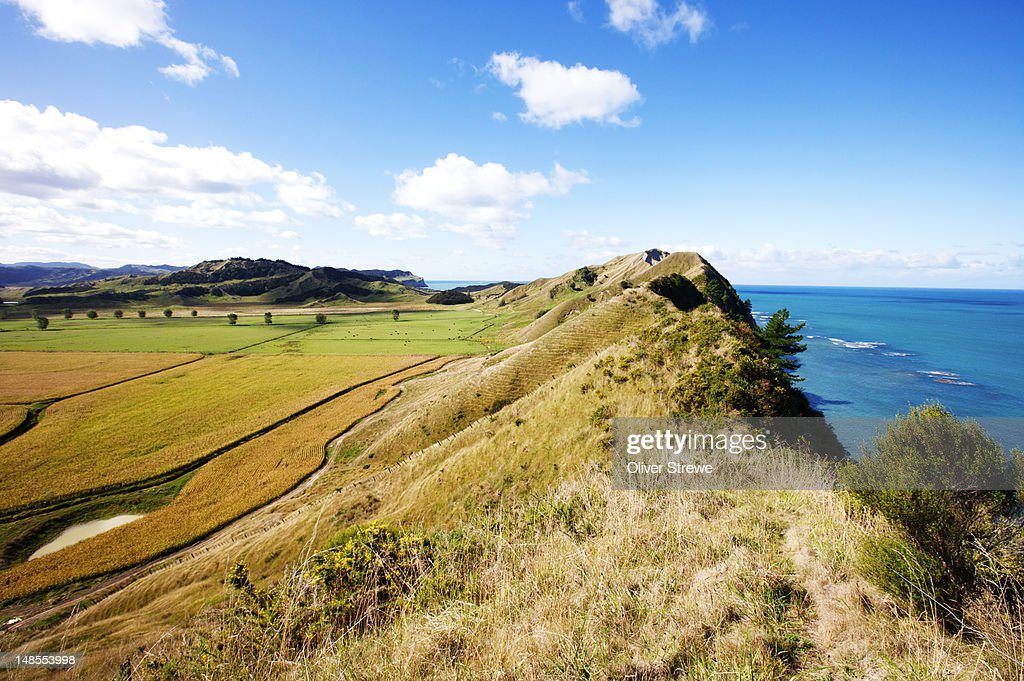 Farmland on coast. : Stock Photo