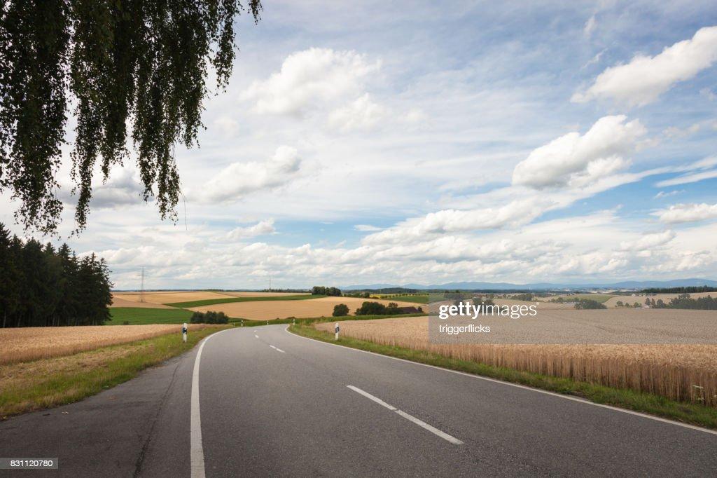 Farmland with big blue sky : Stock Photo