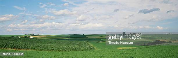 farmlands - timothy hearsum stock photos and pictures