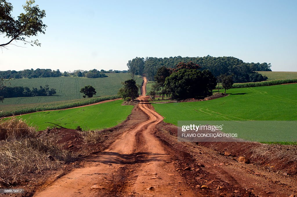 Farms agriculture Brazil : Stock Photo