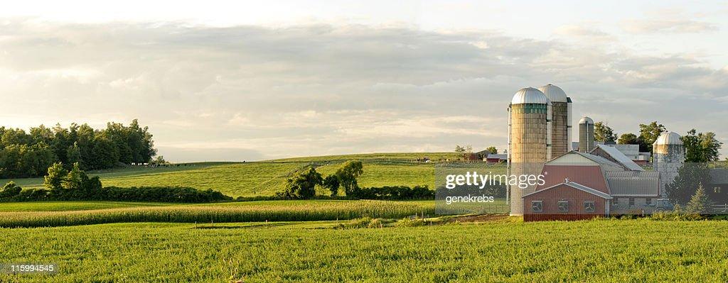Bauernhöfe und Barns Panorama : Stock-Foto