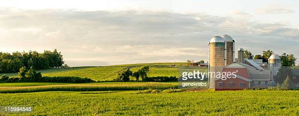 farms and barns panorama - non urban scene stock pictures, royalty-free photos & images