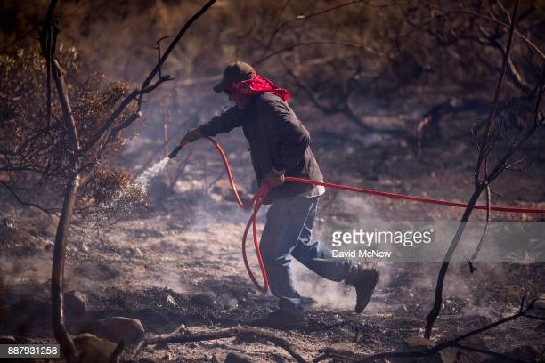 A farmworker fights the Thomas Fire on December 7 2017 near Fillmore California Strong Santa Ana winds are pushing multiple wildfires across the...