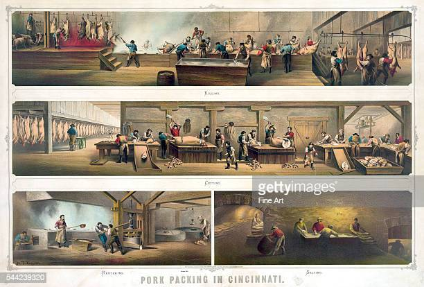 HF Farny Chromolithograph showing the various stages in slaughtering and preparing pigs for market at a meat packing plant published by Ehrgott Krebs...