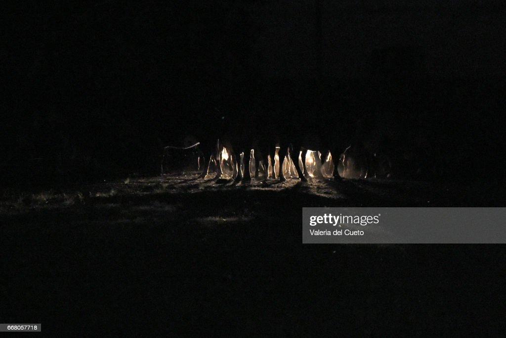 Farois iluminam as patas do gado na chegada a estâncianoite : ストックフォト