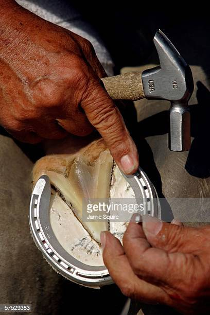 Farrier attaches a horseshoe to the hoof of a horse during morning workouts in preparation for the 132nd Kentucky Derby on May 4, 2006 at Churchill...