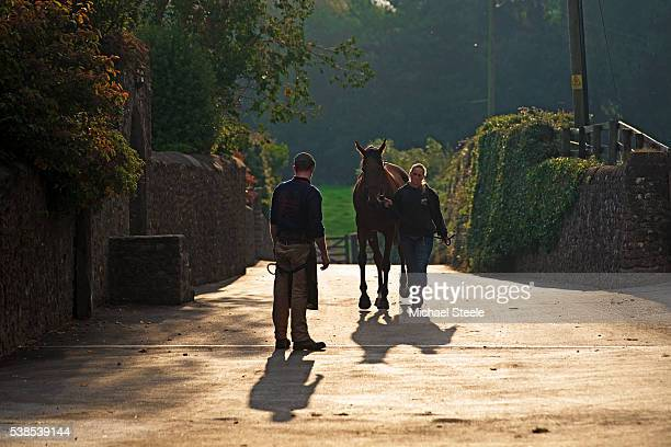 Farrier Ben Parker looks on as Hannah Ball walks with Trickaway on September 30 2015 in Minehead England Sandhill Racing Stables set in 500 hundred...
