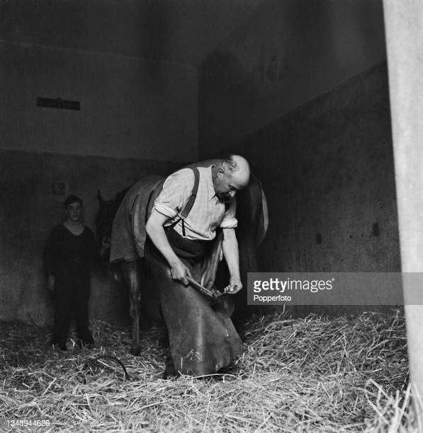 Farrier Bert Ford fits racing shoes to a racehorse at trainer Noel Cannon's Druid's Lodge stables near Salisbury in Wiltshire, England during World...