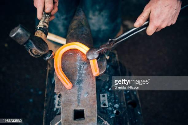 farrier, blacksmith fitting horseshoes - horseshoe stock pictures, royalty-free photos & images