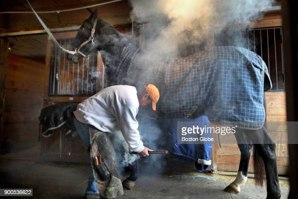 Farrier Bobby Benson puts a new horse shoe on a horse named Gaelic at the SH Equestrian horse stall in Marlborough MA on Dec 19 2017