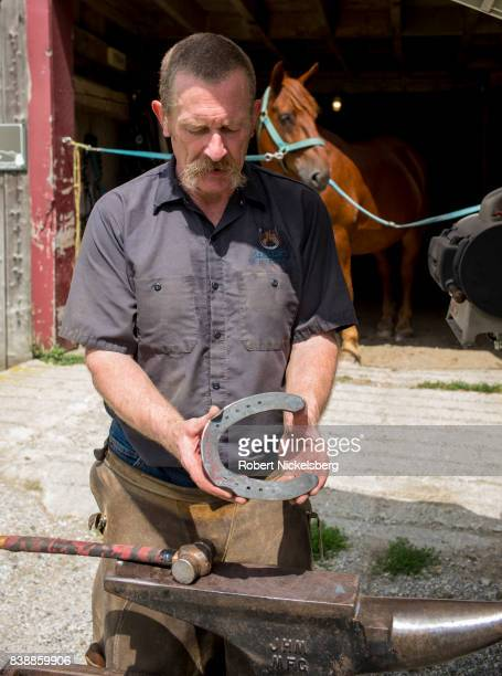Farrier Don Chandler sizes a new horse shoe for Fern, August 19 upper center, one of two draft horses owned by the Merck Forest and Farmland Center...