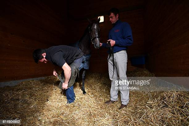 A farrier shoes a horse at the Tattersalls Bloodstock Auction in Newmarket north of London on October 11 2016 There may have been much negative press...