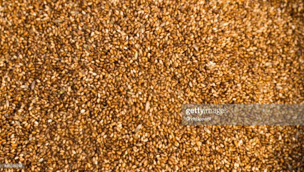 Farrow Grains Wheat Whole Food Stock Photo Getty Images