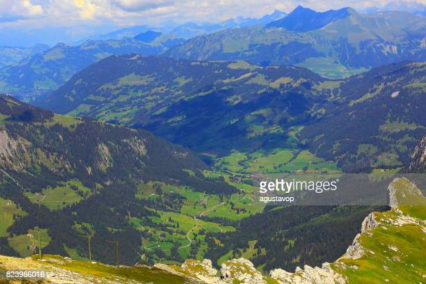 fary tale green alpine landscape above saanen, gstaad and diablerets massif: idyllic alpine flowerbed valley and wildflowers meadows, dramatic swiss snowcapped alps, idyllic countryside, vaud canton,swiss alps, switzerland - vaud canton stock photos and pictures