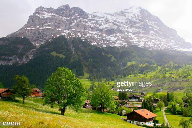 Fary tale landscape: above idyllic Grindelwald alpine village cityscape valley and meadows, dramatic swiss snowcapped Wetterhorn alps, idyllic countryside, Bernese Oberland,Swiss Alps, Switzerland