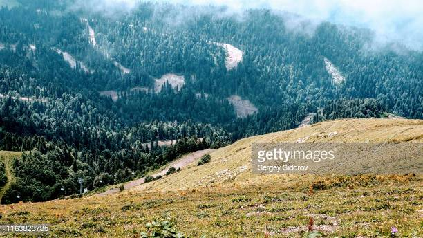fascinating view from the top of the mountain - nature reserve stock pictures, royalty-free photos & images