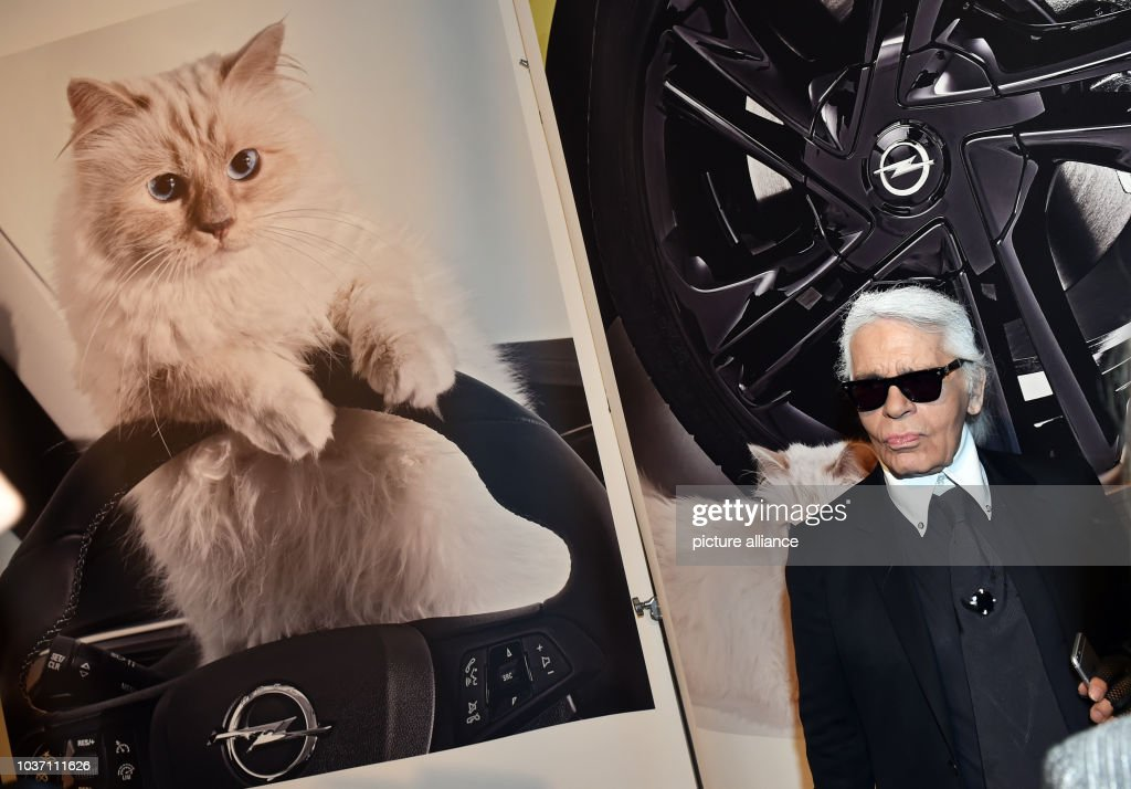 Karl Lagerfeld presents Photo Calender featuring cat  Choupette : News Photo