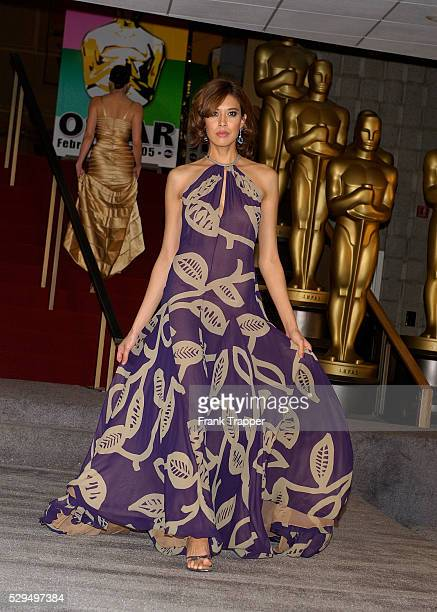Fashion model Rochelle wears Bill Blass' grape and khaki print chiffon gown with Chopard aquamarine drop earrings at the 77th Annual Academy Awards��...
