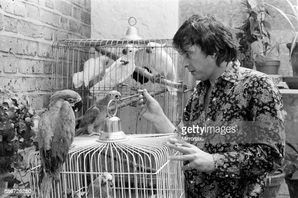 Fashion photographer David Bailey pictured at home with some of his 40 parrots, some of which are very rare and even extinct in their native country,...