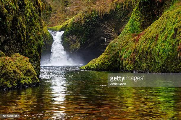 Fast exposure of Punchbowl Falls, Eagle Creek, OR