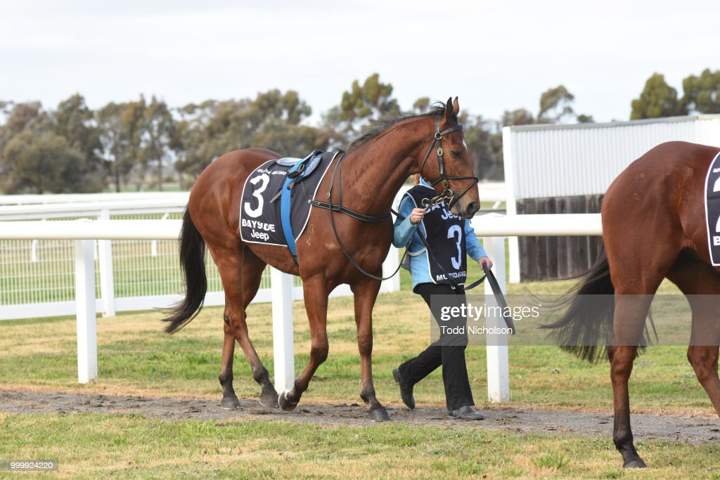 Murtoa/Marma Racing Club Race Meeting
