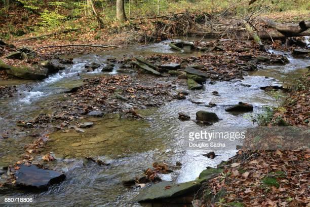 fast moving mountain stream, east fork state park bethel, ohio, usa - lençol freático imagens e fotografias de stock