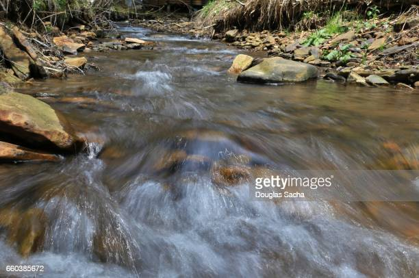 fast moving mountain stream - spring flowing water stock pictures, royalty-free photos & images