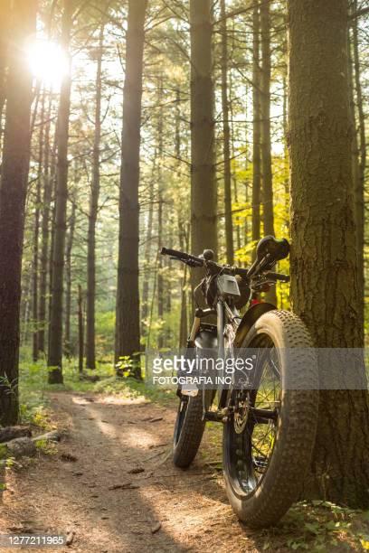 屋外トレイルでの太った自転車 - 変速ギア ストックフォトと画像