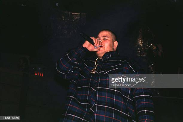 Fat Joe during Hoes With Attitude in Concert at Silverado Club 1994 at Silverado Club in New York City New York United States