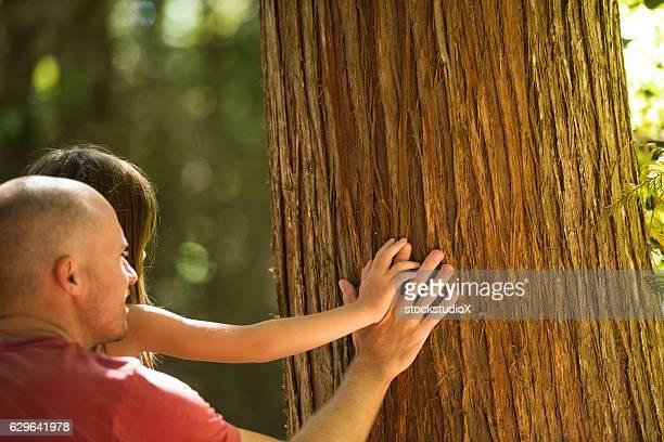 Vater und Kind Spiel in Natur