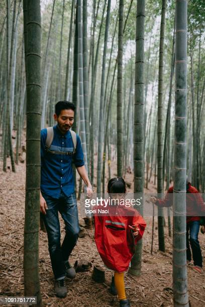 Father and child hiking in bamboo forest