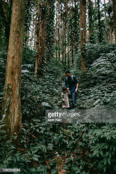 Father and child hiking in lush green rainforest