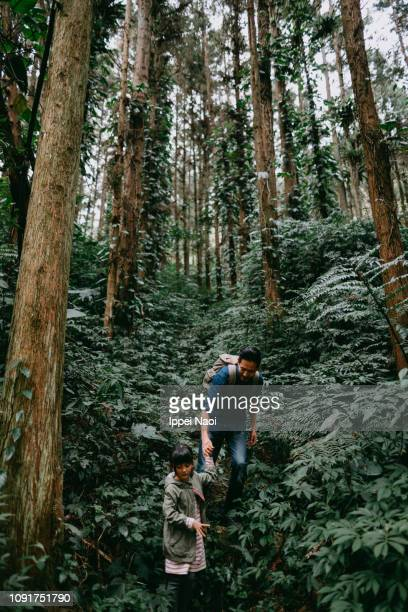 Father and child hiking in lush green rainforest, Taiwan